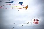 kite017LR
