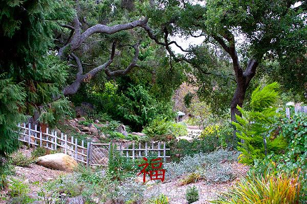 santa barbara botanic garden moshi moshi kenji